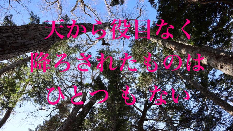アイヌの叡智〜自然への敬意と感謝が神と繋ぐ扉開く