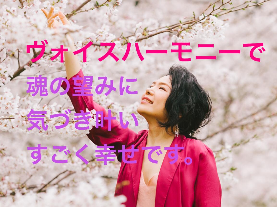 【愛と豊かさ創造】【魂の望み】自然と叶う〜宇宙愛ヴォイスヒーリング〜
